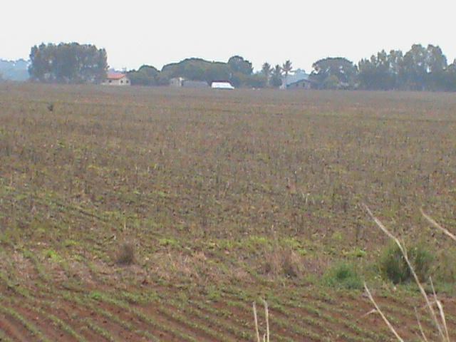 Venda Fazenda Campos de Júlio - MT